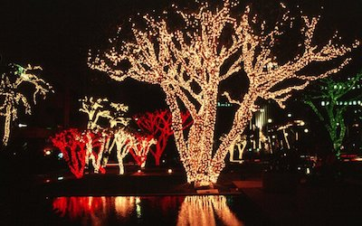 How Much Electricity Do LED Christmas Lights Use?