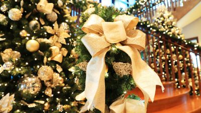 Ultimate Greenery Guide: Christmas Wreaths, Garlands and Sprays